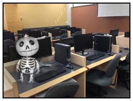 bonhomme in computer centre